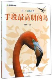 H-科普图书馆·了不起的鸟世界--手段最高明的鸟(四色)