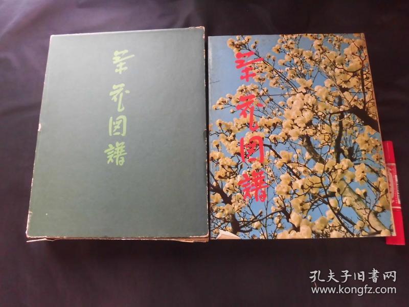 茶花図谱 1册全 下岛正夫编 茶と美舎 包邮