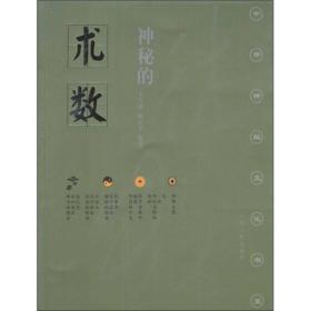 中华神秘文化书系:神秘的术数 中国算命术研究与批判(修订版 )