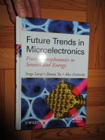 Future Trends In Microelectronics: From      【详见图】,硬精装