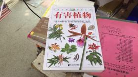 有害植物   店10