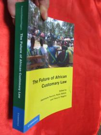 The Future of African Customary Law        【详见图】