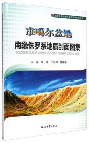 准噶尔盆地南缘侏罗系地质剖面图集\9787502199319石油工业