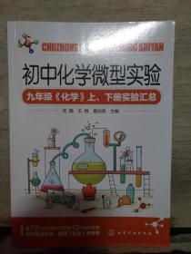 初中化学微型实 验