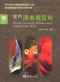 家养淡水观赏鱼-02