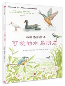 可爱的水鸟朋友-水边的自然课