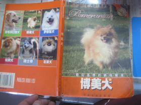 爱犬系列丛书:貌似狐狸的娇俏精灵---博美犬【铜版彩图】