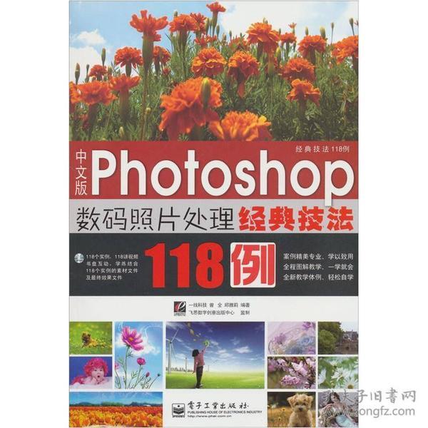 中文版 Photoshop数码照片处理经典技法118例