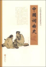中国词曲史—中国文化艺术名著丛书9787566704702