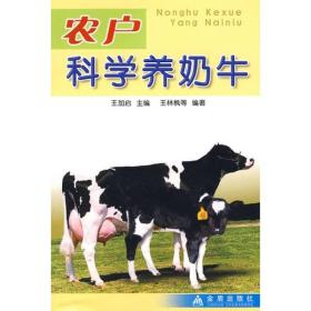 农户科学养奶牛