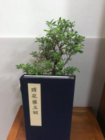 晴花暖玉词(一函二册)宣纸蓝印