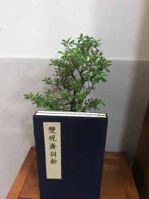 线装蓝印本《双砚斋词钞》一函2册全 规格30x18.5