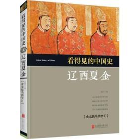 看得见的中国史:辽西夏金
