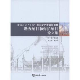 """中国石化""""十五""""期间矿产资源补偿费勘察项目和保护项目论文集"""