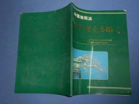 中国岭南派芳村盆景艺术---大16开