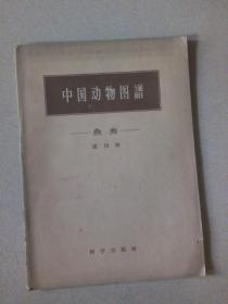 中国动物图谱 鱼类 (第四册)
