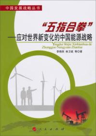 """""""五指合拳""""—应对世界新变化的中国能源战略"""