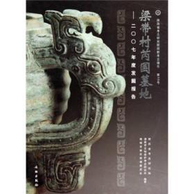 梁带村芮国墓地:2007年度发掘报告