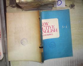NEW ACTIVE ENGLISH 3-4