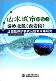 T-山水城市视野下秦岭北麓(西安段)适应性保护模式及规划策略研究