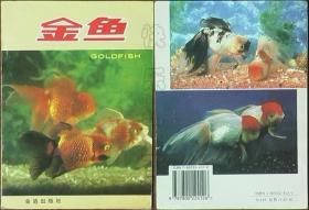 金鱼(5印)
