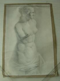 """鲁美教师素描作品""""维纳斯石膏全身像"""""""