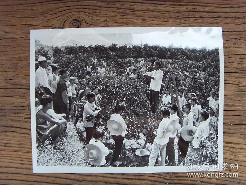超大尺寸老照片:【※1976年,位于重庆市的,中国