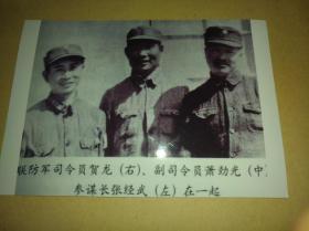 联防军司令员贺龙,副司令员肖劲光,参谋长张经武黑白合影照片一张