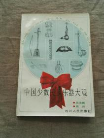 中国少数民族乐器大观