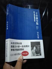 王小波全集(第八卷 短篇小说):似水柔情【