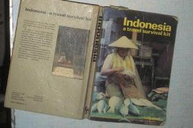 Indonesia a travel survival kit