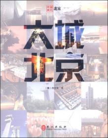 中国城记:大城北京