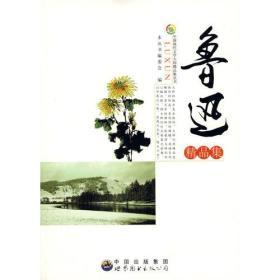 中国现代文学大师精品集丛书--鲁迅精品集