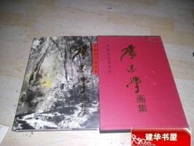 中国当代美术家 卢志学画集(精装涵盒) 一版一印   W7