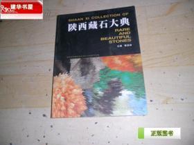 陕西藏石大典(骞国政 主编)  W7