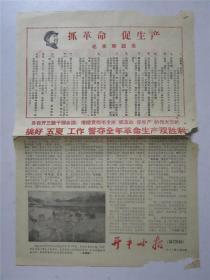 文革广东地方小报: 开平小报(第220期)1967年6月28日