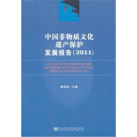 中国非物质文化遗产保护发展报告(2013)