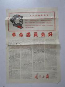 文革广东地方小报: 开平小报 开平县革命委员会机关报(第15期)1968年4月1日