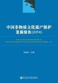 中国非物质文化遗产保护发展报告:2014