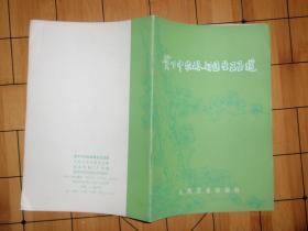 贫下中农的好医生王玉莲 051103