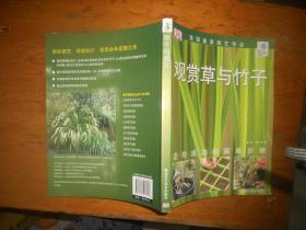 观赏草与竹子