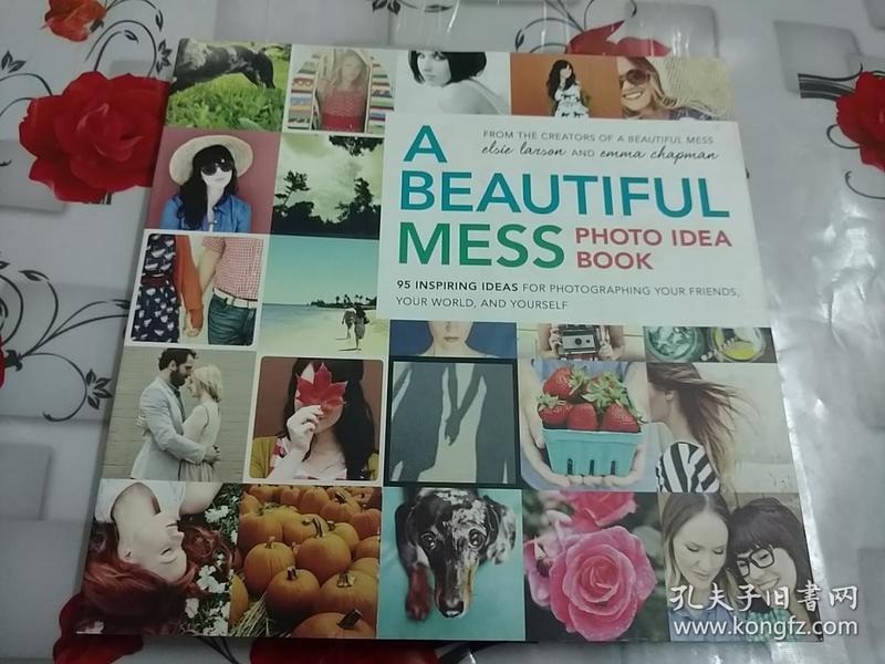 A Beautiful Mess Photo Idea Book  柜2