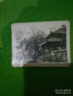 五十年代冷泉亭黑白老照片一张!