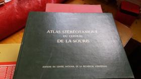 ATLAS STEREOTAXIQUE DU CERVEAU DE LA SOURIS