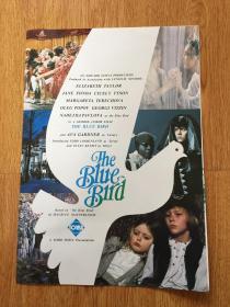 【日本电影资料1】电影《THE BLUE BIRD(青鸟)》宣传资料,约70年代日本印刷