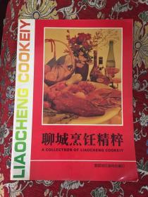 聊城烹饪精粹(全铜版彩印)
