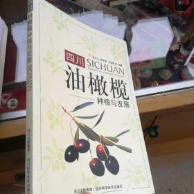 四川油橄榄种植与发展