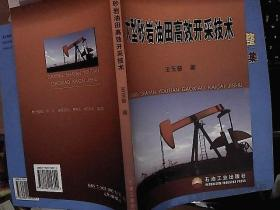 大型砂岩油田高效开采技术