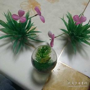 塑料花草+水鱼草玩具