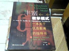 丰富教学模式:一本关于优质教育的指导书